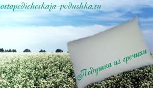 подушка_из_гречихи